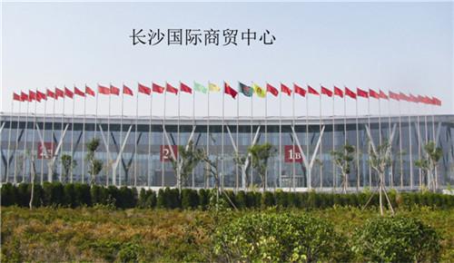 河南不锈钢旗杆案例:长沙国际贸易中心