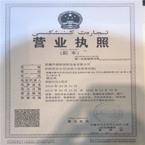 新疆丹福斯消防公司营业执照