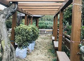 河南东蒴园林绿化有限公司