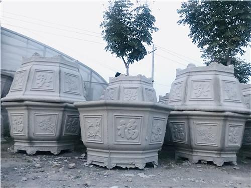 河南超大花盆盆栽,盆栽花卉实际效果如何