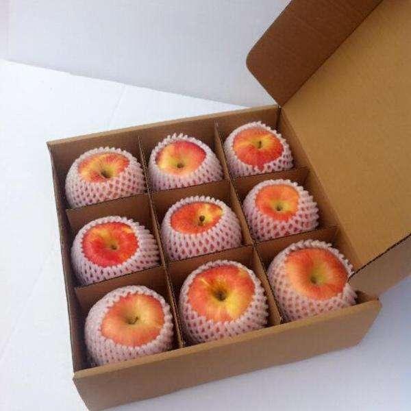 信阳水果纸箱厂家