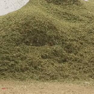 优质花生秧饲料