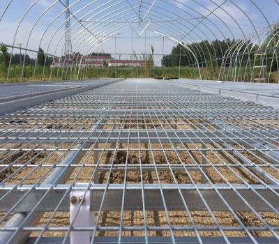 天程公司为大家介绍一下河北苗床网土温过低产生的原因是什么