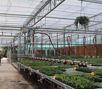 冬季浇水做好这四点,温室苗床蔬菜就能健壮成长!