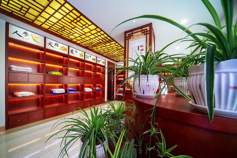 中医艾灸科展区