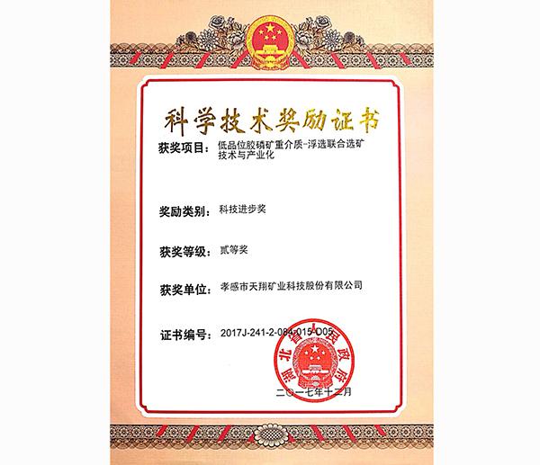 四川邻苯二甲酸二乙酯-科学技术奖励证书