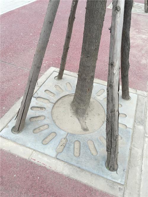 南充复合型树基盖