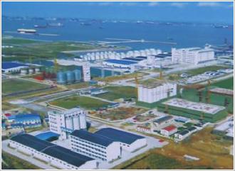 上海良友集团外高桥日处理300吨成套碾米工程