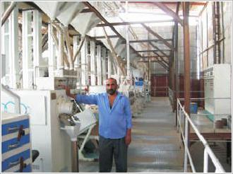 苏丹日产100吨精米生产线