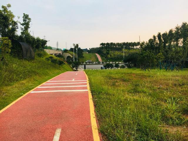 长沙绕城高速西段景观走道