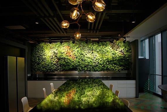 西安仿真植物墙垂直立体效果图