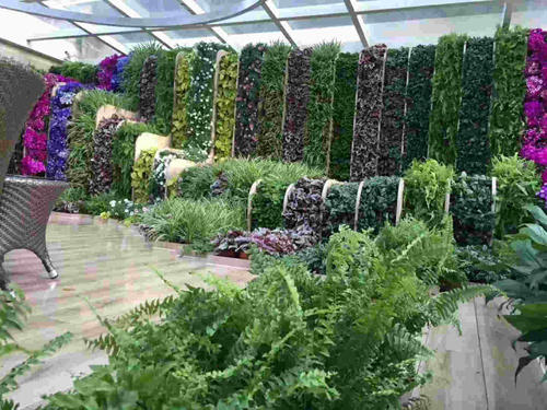 立体仿真植物墙厂家
