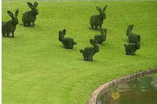 西安仿真绿雕植物墙