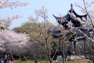 太乙仙山植物园