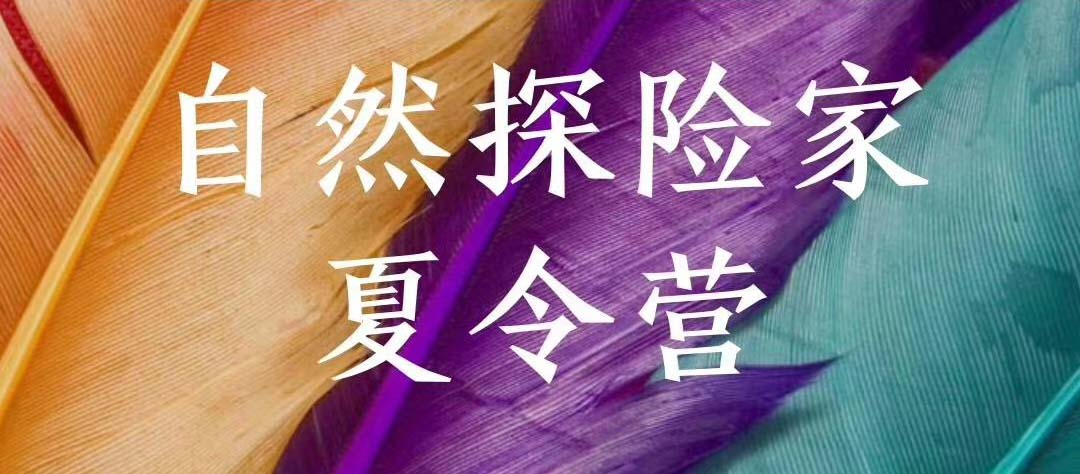 2020太乙仙山自然探险家夏令营