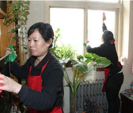 襄阳家政服务