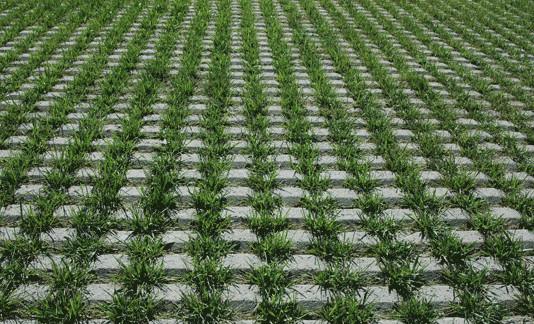 针对新型的植草砖在使用的时候有哪些特点呢