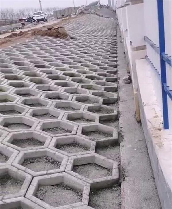 信阳护坡砖施工现场