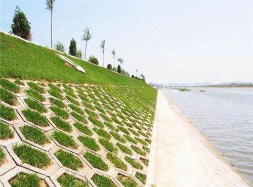 信阳植草砖