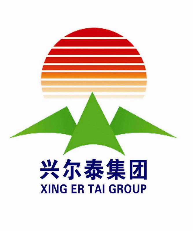 辽宁粘土耐火砖厂家与宁夏兴尔泰集团的成功案例