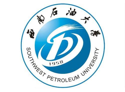 西南石油大学材料科学与工程学院王斌副院长一行到我司调研。