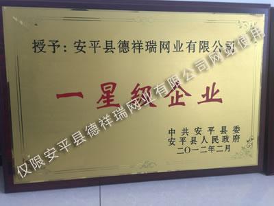 德祥瑞公司榮獲安平縣一星級企業
