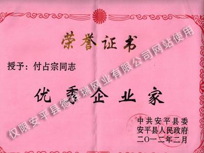 德祥瑞網業公司榮譽證書