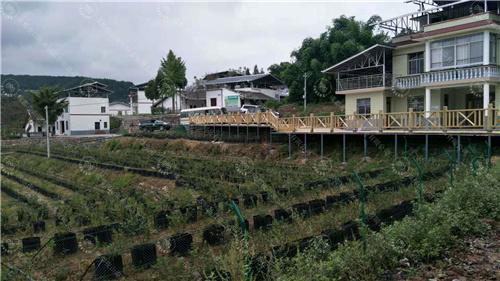 防腐木厂家