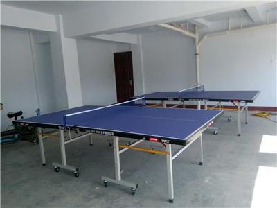 河南室内乒乓球台厂家