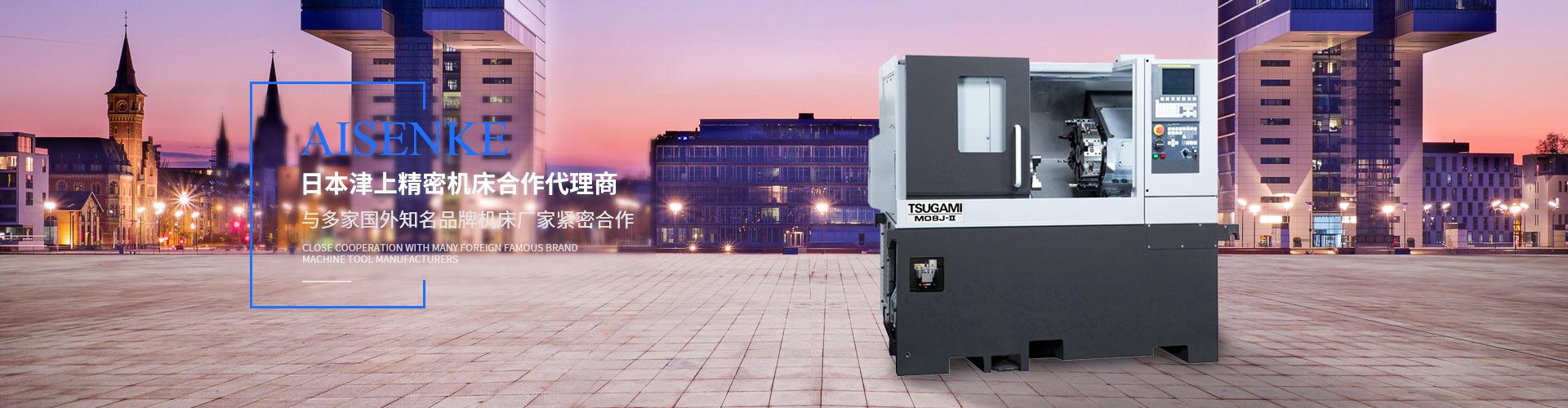 四川电气集成公司