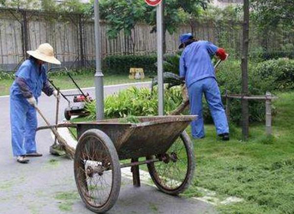 物业保洁修草坪