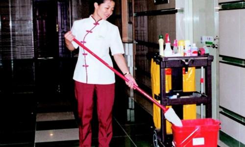 南充保洁公司教你螨虫去除的方法,让你远离螨虫伤害!