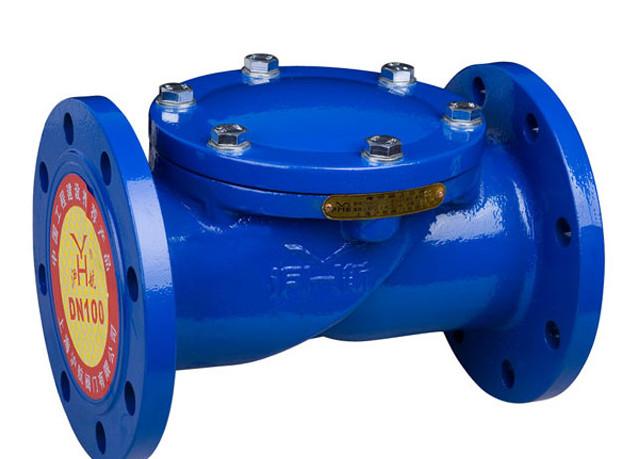 西宁某水厂采购橡胶瓣止回阀