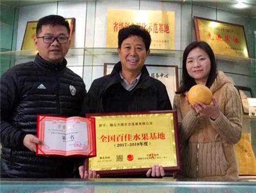 孝感金果荣获全国百佳水果基地总冠军称号