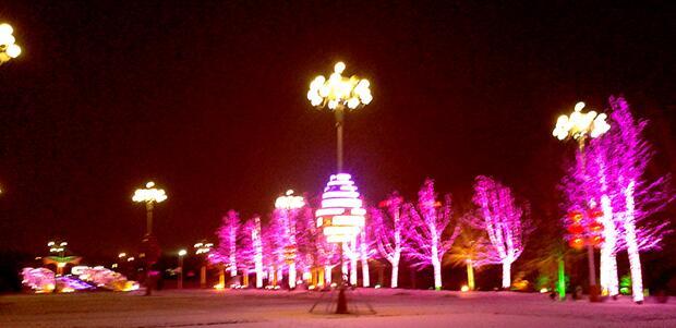 广场植被亮化