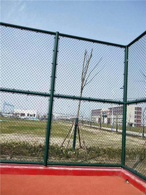 体育场护栏为某中学进行实施!