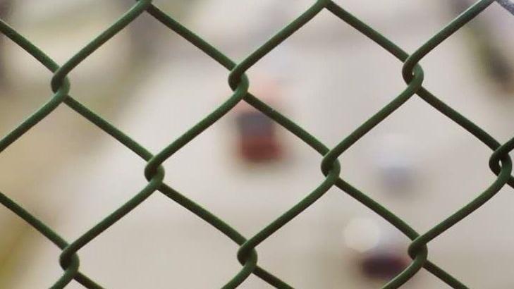 PE/PVC包塑勾花网