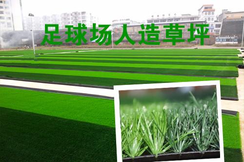 河南足球场人造草坪