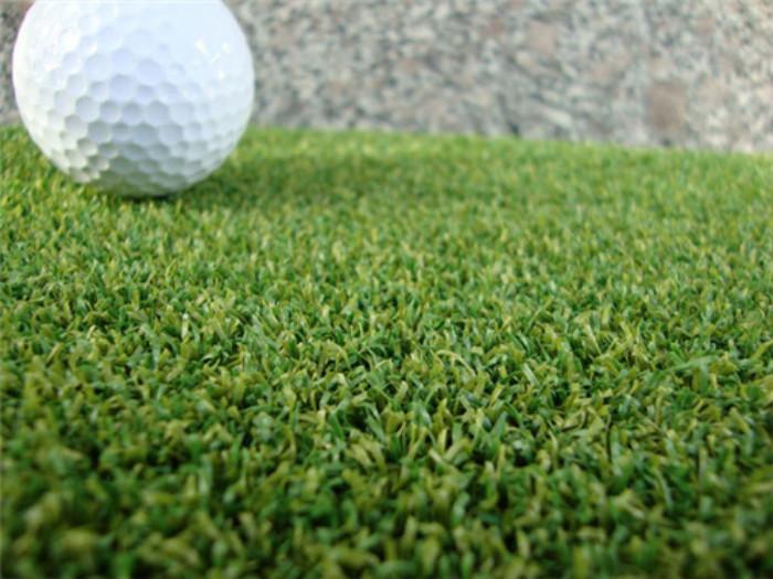 高尔夫球场人工草坪