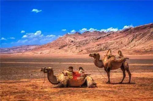 新疆今冬首趟进疆务工人员返乡专列发车
