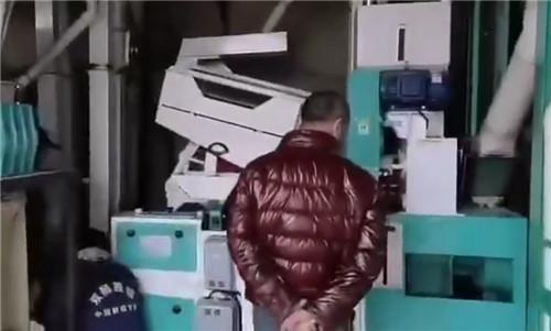 四川碾米机-湘粮20B型成套精米设备视频案例