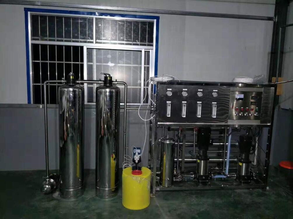 1吨双级纯净水设备