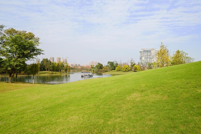 云南草坪——合作清水公园