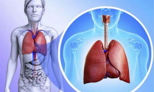 肺部影像学检查