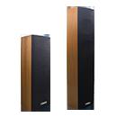 迪士普-DSP203Ⅱ/403Ⅱ 室内音柱