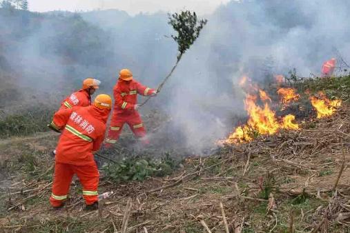 四川凉山森林火灾30名扑火队员牺牲,英雄精神不朽
