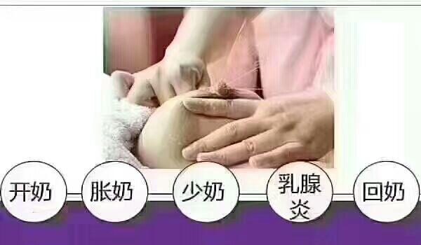 邓州催乳培训机构