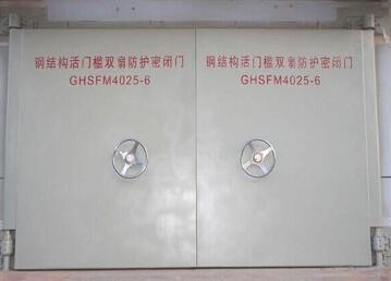 钢结构双扇防护密闭门