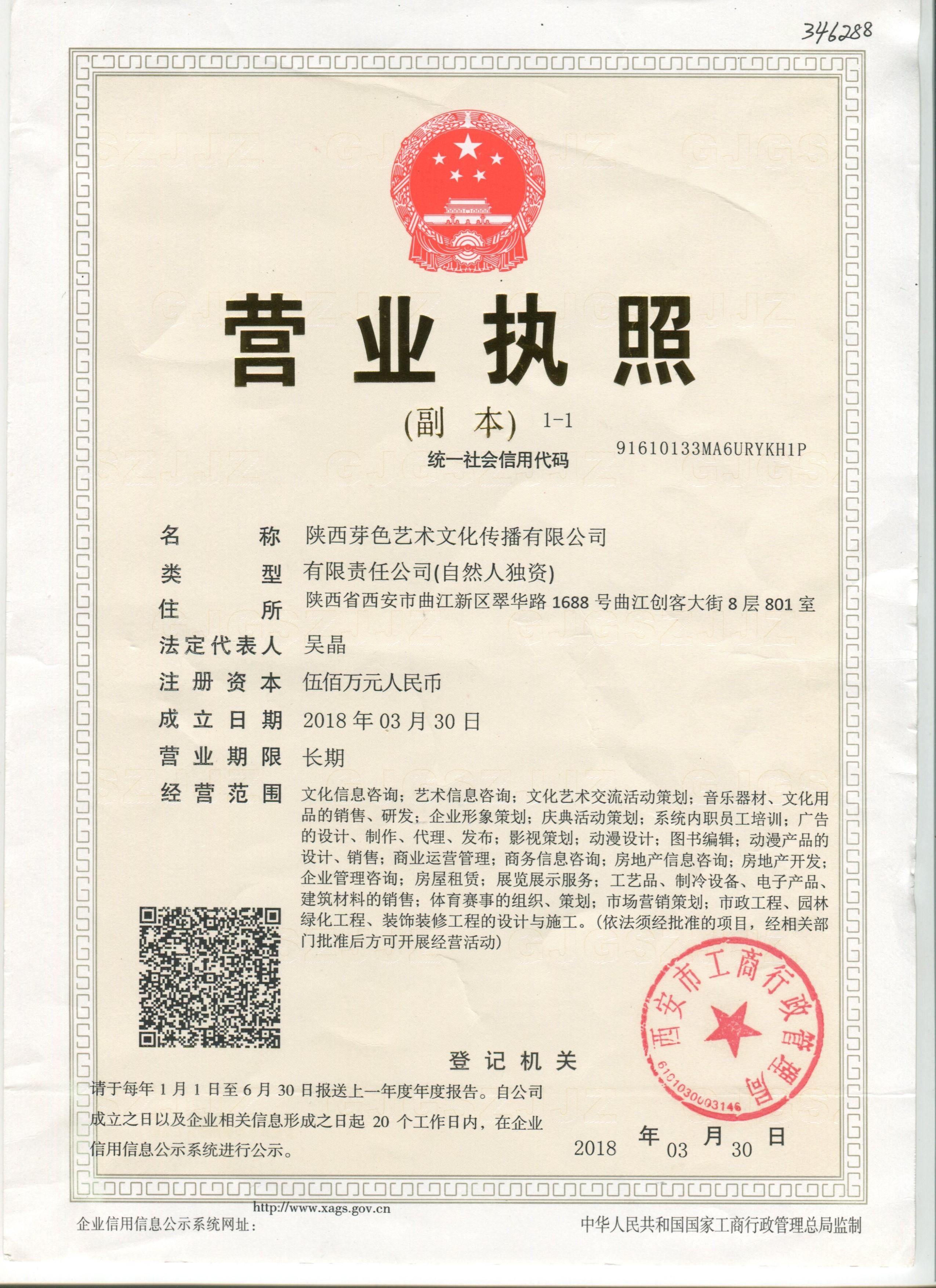 陕西芽色艺术文化传播
