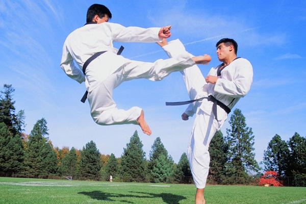 武术学习练习